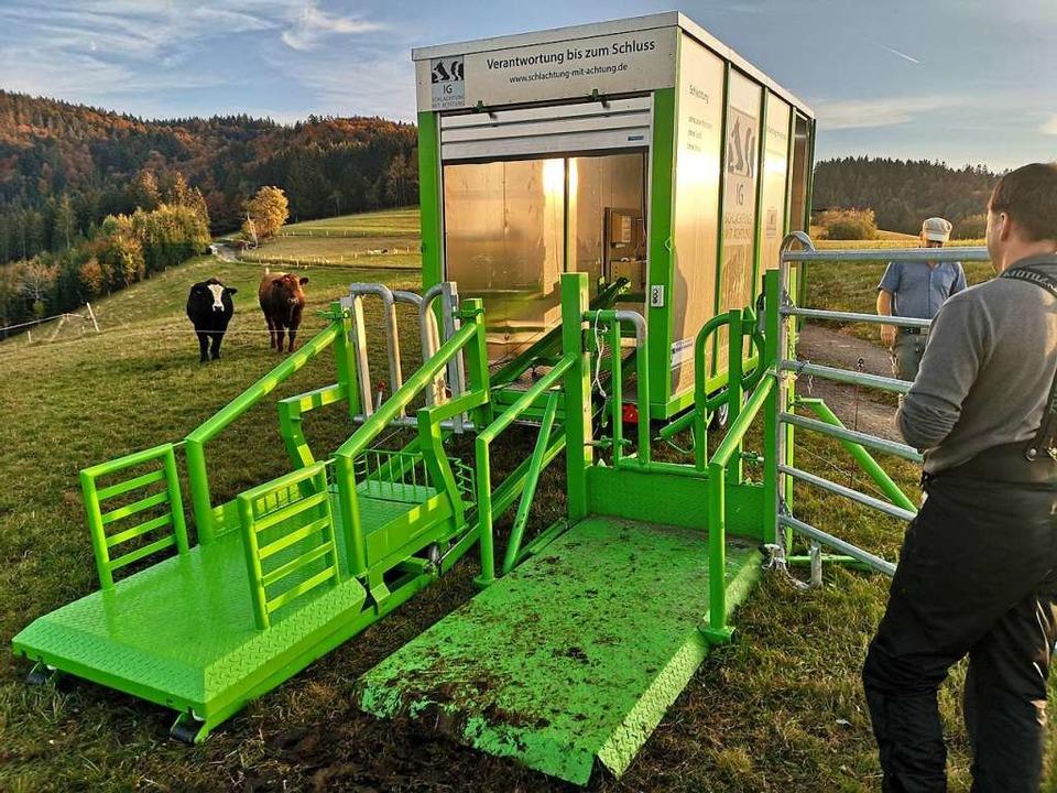 Das Schlachtmobil wird auf der Weide einsatzbereit gemacht.  | Foto: Julian Liewer/SMA