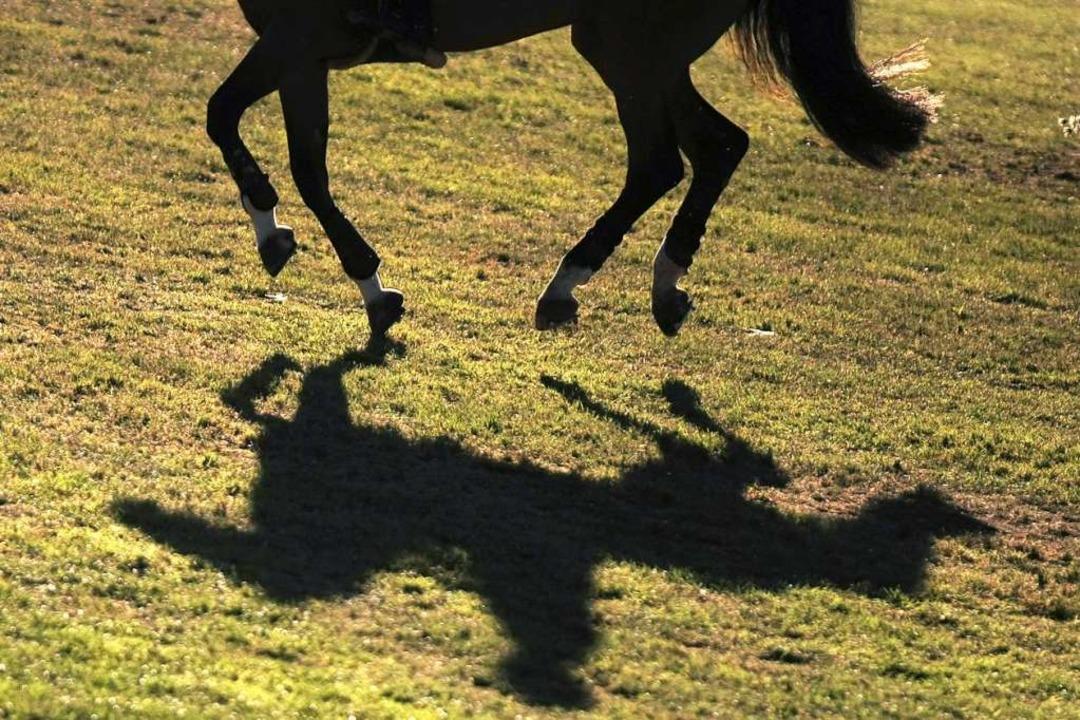 Ein Pferd hat sich am Samstagmorgen be... zu schnell entgegen kam (Symbolbild).  | Foto: dpa