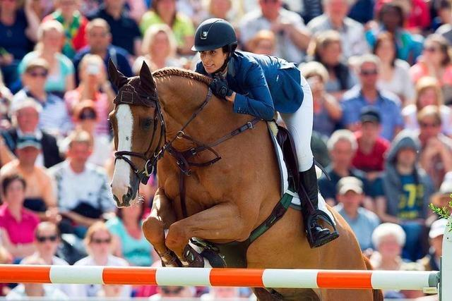 Wie teuer ist ein Pferd?