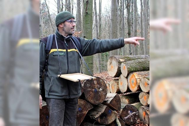 Brennholz zum Anschlag