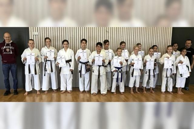Rheinfelder Karateka legen Prüfung ab