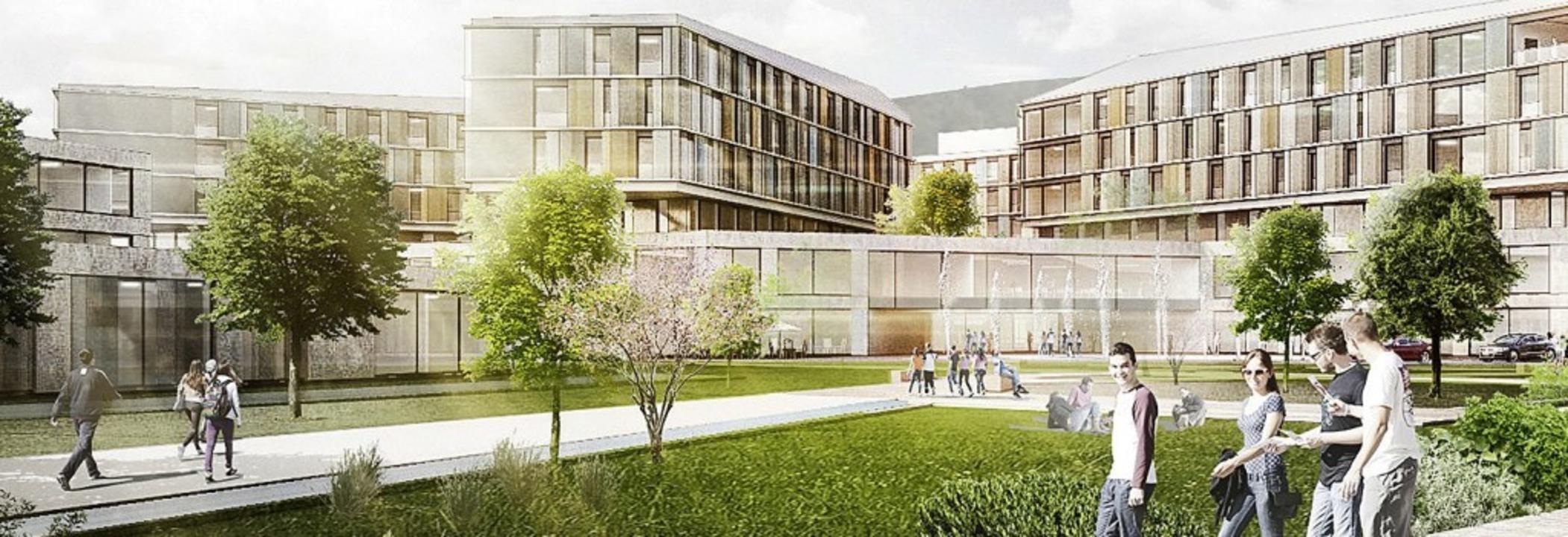 Bauherr des geplanten Zentralklinikums...aber letztlich der Landkreis Lörrach.     Foto: Visualisierung: a sharchitekten
