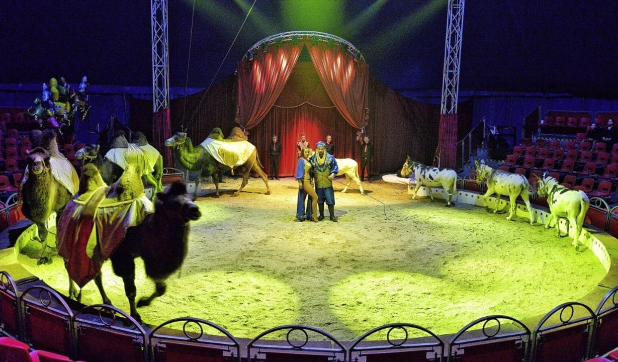Zum 20. Mal beschert der Zirkus den Lörrachern Weihnachten in der Manege.   | Foto: WeihnachtscircuS