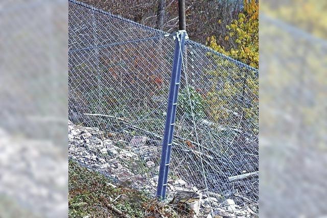 Das Gitter soll schützen
