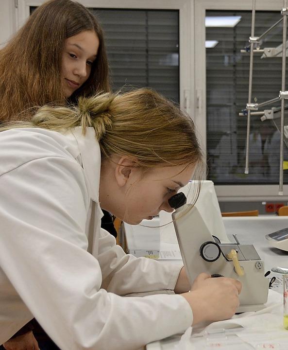 Unter dem Mikroskop gab es Spannendes zu sehen.  | Foto: Horatio Gollin
