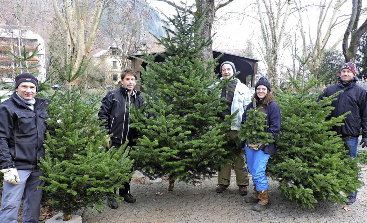 Weihnachtsbäume in allen Größen und vo...nnes Wernet beim Verkauf unterstützt.     Foto: Sredniawa