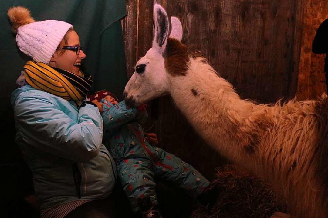 Auf du und du mit dem Lama.  | Foto: Anja Bertsch