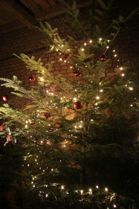 Schön weihnachtlich war es im Stall.  | Foto: Anja Bertsch