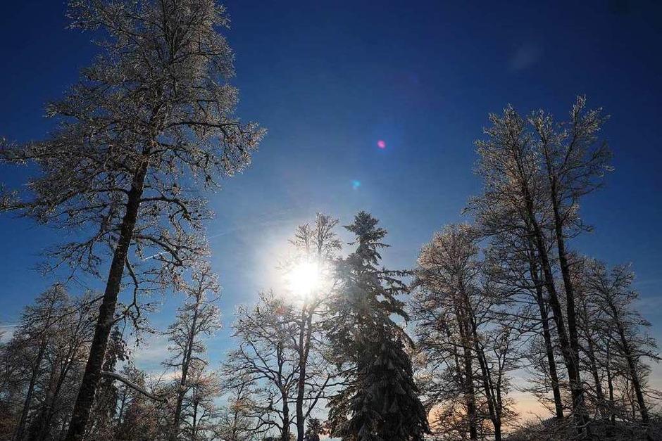 Oben Sonne, unten Nebel: Ein Winterspaziergang in Bildern mit Blick ins Menzenschwander Tal. (Foto: Susanne Gilg)