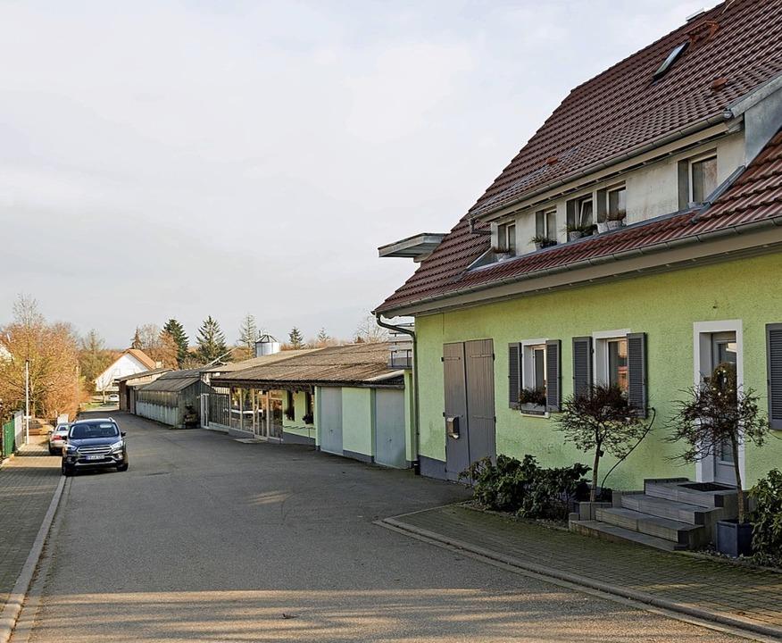 Auf dem Areal des Gartenbaubetriebs Kö...könnte ein neues Baugebiet entstehen.   | Foto: Helmut Rothermel