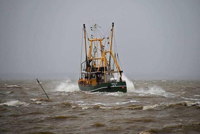 Fischer dürfen weniger Hering fangen