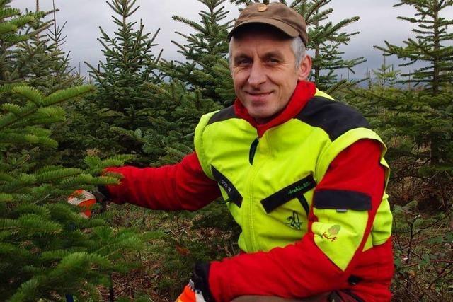 Dieser Weihnachtsbaumhändler hat in 25 Jahren schon viel erlebt
