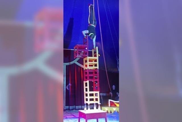 Raus aus dem Alltag, rein in die Zirkuswunderwelt