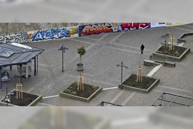 Bäume für Bahnhofsplatz und den Hebelpark
