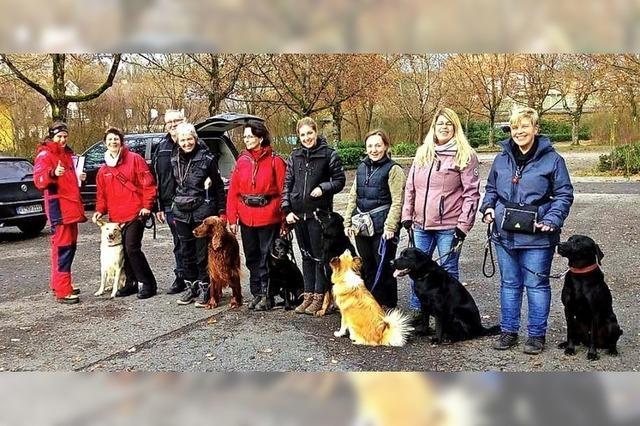 Der Hund als wichtiger Sozialpartner in der Familie