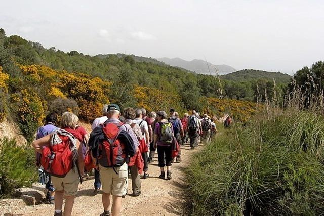 Von der Nachmittagswanderung bis zur Wanderwoche auf Mallorca