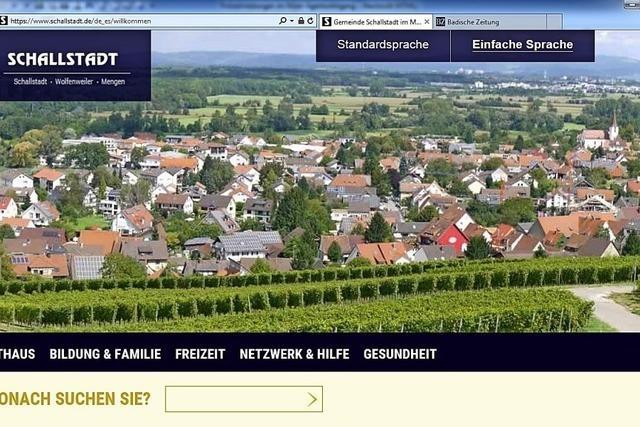 Inklusionsvermittler informieren sich über barrierefreie Homepage