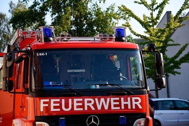 Brennender Baum löst Feuerwehreinsatz in Lörrach aus