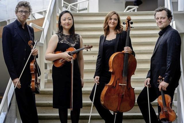 Varian Fry Quartett gestaltet am Sonntag, 13. Januar, Schlosskonzert in der Wehrer Stadthalle