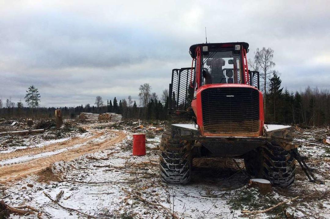 Schweres Gerät wird bei der Rodung der Wälder in Russland eingesetzt.   | Foto: Stefan Scholl