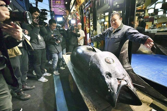 2,7 Millionen für einen Fisch