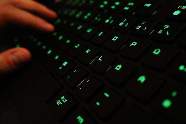 BKA durchsucht nach Hackerangriff Wohnung eines 19-Jährigen in Heilbronn