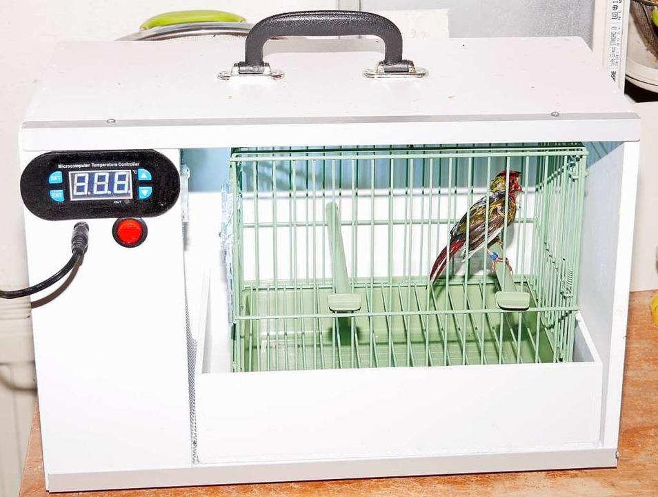Der Trockenkäfig für Vögel.    Foto: Eva Korinth