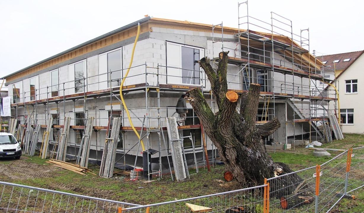 Derzeit im Bau: der neue Kindergarten in Gottenheim   | Foto: Horst David