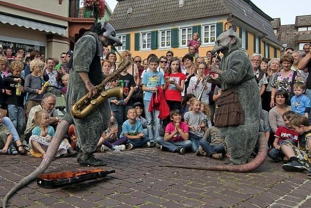 Kein Kukuk-Festival in diesem Jahr