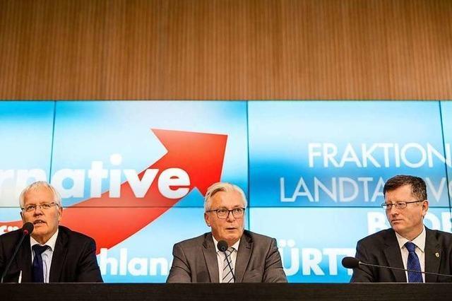In der AfD-Landtagsfraktion gibt es wieder interne Verwerfungen