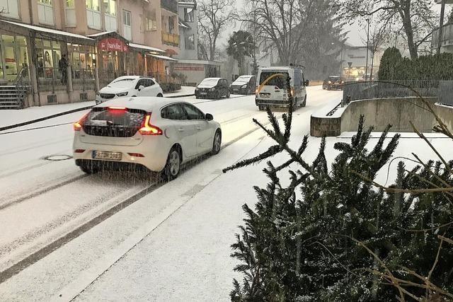 Christbäume im Schneegestöber
