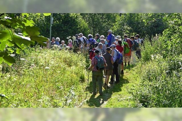 Volles Programm für Wanderfreunde