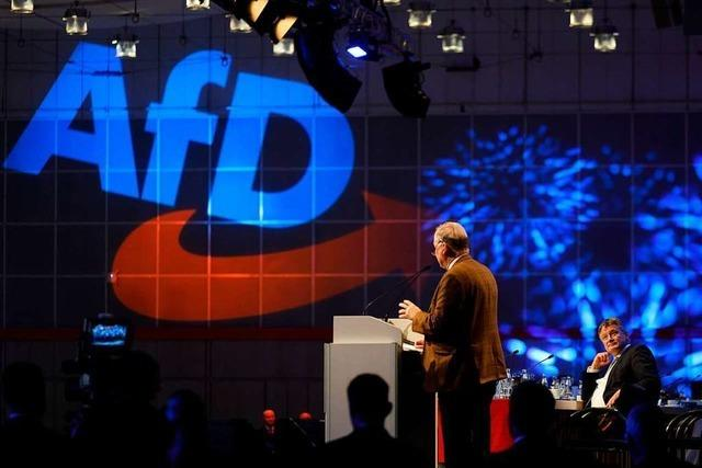 2019 ist in Deutschland ein Schicksalswahljahr für die Demokratie