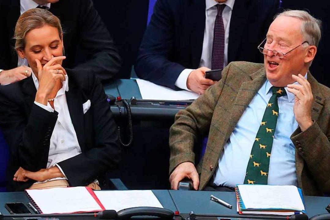 Die Vorsitzenden der AfD-Bundestagsfra...der Gauland, im Bundestag (Archivbild)  | Foto: Kay Nietfeld