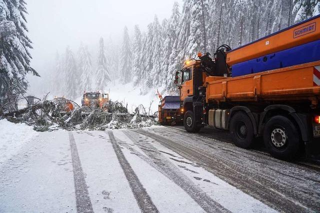 Tauwetter sorgt für akute Schneebruchgefahr: viele Straßen gesperrt