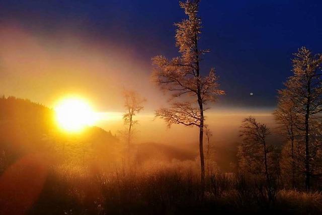 Sonnenuntergang am Kandel