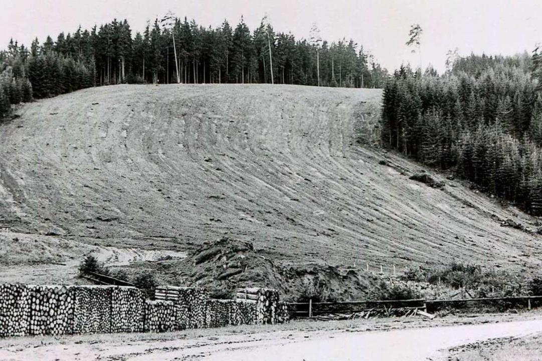 Der Maiswiesenhang nach der Rodung 1968  | Foto: Roland Weis