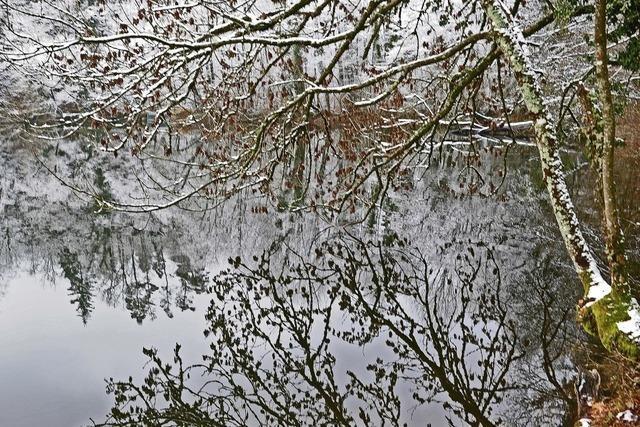 Fritalisch-Badische Vereinigung für Heimatkunde hält am Mittwoch, 16. Januar im Trompeterschloss in Bad Säckingen einen Vortrag über den Bergsee.