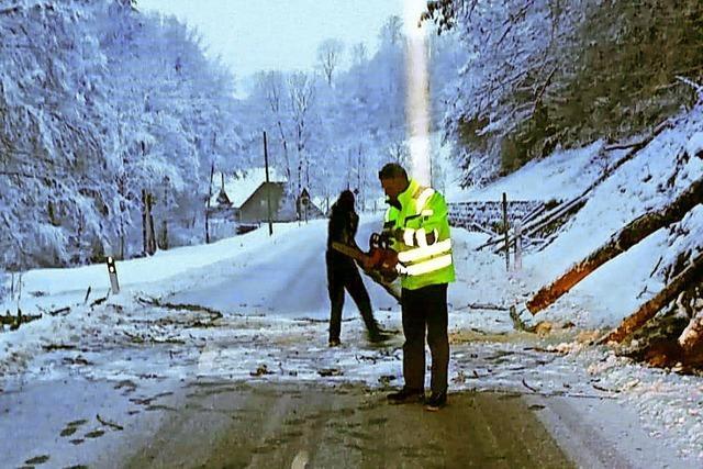 Schneebruch-Hindernis beseitigt