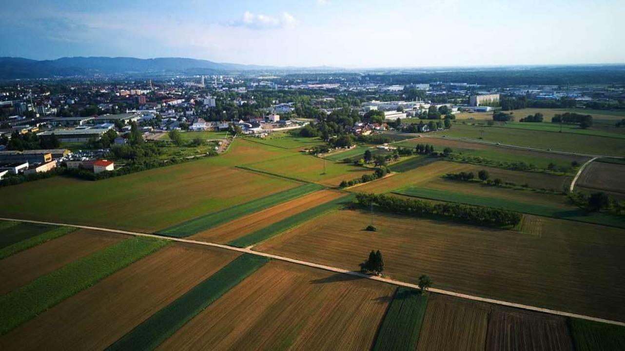 Auf dieses freie Feld soll auf einer G... Bühl und dem Holderstock geschlossen.  | Foto: Michael Saurer