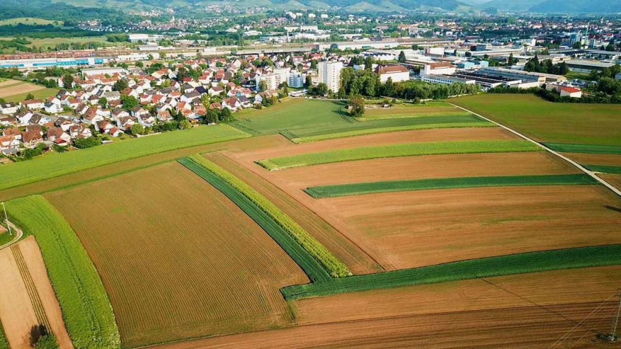 Das Drohnenfoto wurde über Bühl in Ric...durch das neue Ortenauklinikum bebaut.  | Foto: Michael Saurer