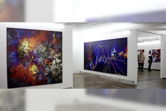 Neue Galerie sieht ein Potenzial in der Region