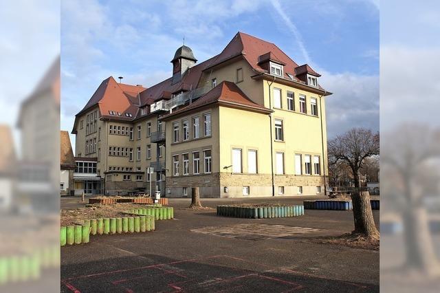 Kahlschlag auf dem Ebert-Schulhof