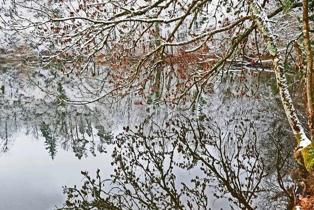 Der Bad Säckinger Bergsee bietet einen Rückblick auf 50.000 Jahre