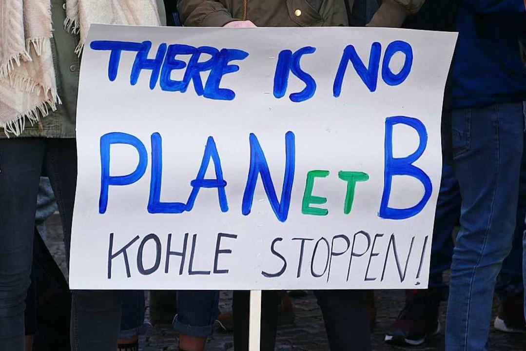 Hauptsächlich gegen den Braunkohleabbau sprachen sich die Streikenden aus.  | Foto: Ralf Burgmaier