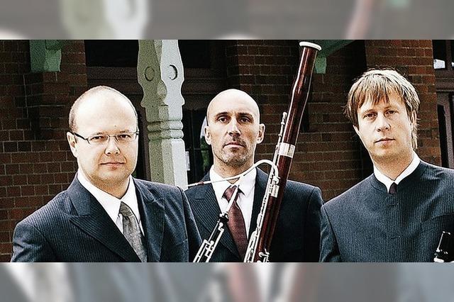 Trio Lézard in Waldkirch
