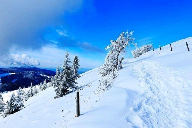 Winterwunderland am Belchen