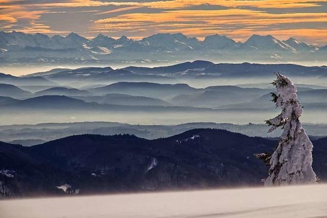 Die Alpen sind nur einen Katzensprung entfernt