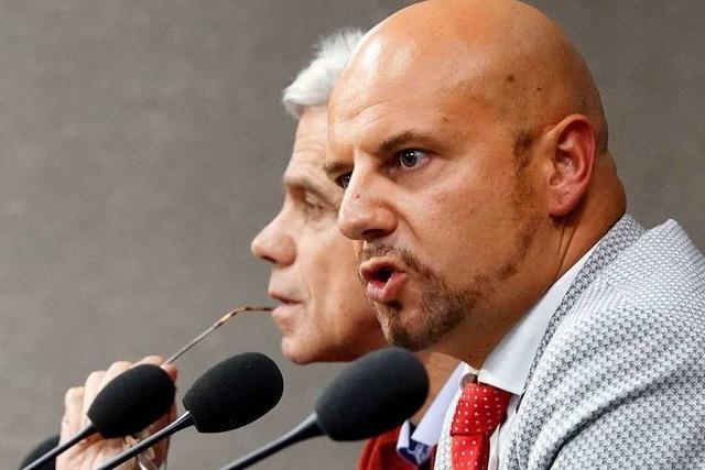 Räpple und Gedeon scheitern vor Verfassungsgericht