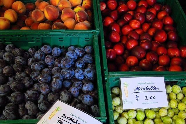 Die enorme Erntemenge drückt auf den Obst-Preis